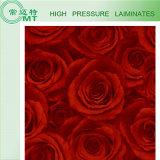 Высоким лист/ламинат компакта прокатанные давлением