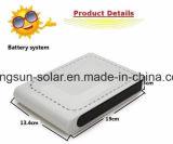 Portable de chargeur de côté de nécessaire de panneau de système de d'éclairage d'énergie solaire de batterie au lithium 10W
