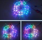 Feiertag helle Baugruppe RGB-LED