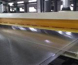 Lexan/PC Multiwall 빈 장 밀어남 선