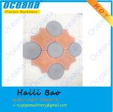 Les moulages en plastique pour font à couplage les produits concrets hexagonaux de machine à paver dans l'usine de la Chine