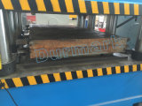 Machine de moulage gravante en relief de peau de porte de porte de plaque en acier en aluminium de porte