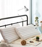 Tubo flessibile del PE di doppi strati di ultimo disegno e cuscino staccabili di massaggio del cuscino del poliestere