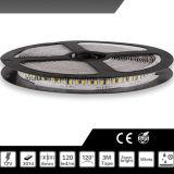 방수 12V SMD 3014 LED 지구 빛