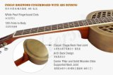 Os azuis de bronze baratos do corpo de Duolian Bell deslizam a guitarra acústica de Resophonic