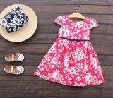 Las muchachas de los cabritos de la ropa de los niños del color rojo imprimieron a princesa Skirt