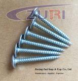Vis Drilling 4.2*13 Tornillos d'individu principal de disque