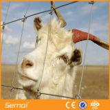 Frontière de sécurité de bétail de qualité de prix usine
