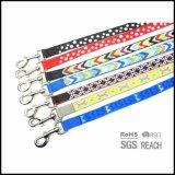 反射ラベルが付いている普及した編まれたポルカドットの飼い犬の鎖