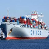 Serviço de transporte excelente à zona franca dos dois pontos como a expedição de LCL