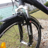 """중국 싸게 26 """" 판매 (RSEB-203)를 위한 도시 전기 자전거"""
