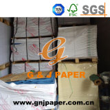 G et J Paper Marques Tissue Paper for Gifts Wrapping