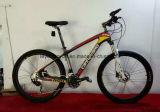 Kühles Gefühls-Art-Gebirgsfahrrad-neues Entwurfs-Fahrrad (LY-C-0619)