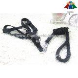 Hot-Sale de haute qualité de couleur Pearly-Lust 10mm Polyester / Nylon Leash & 15mm Harness réglable