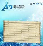 El panel de emparedado de acero de la PU del color de la alta calidad para el sitio de conservación en cámara frigorífica en China