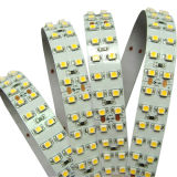 Indicatore luminoso di striscia del LED 3528SMD, 240LED/Meter