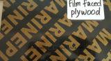 A película enfrentou a madeira compensada com alta qualidade