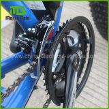 販売のための高速高い車輪の電気自転車かEbike