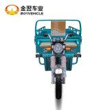 1000W 60V 20Aの電気貨物三輪車