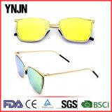 Os óculos de sol modelo os mais atrasados dos vidros da personalidade de Ynjn