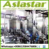 vollautomatisches Steuerwasser-abfüllende Geräten-Preise PLC-4500bph