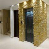 Piccolo elevatore domestico esterno dell'interno residenziale di vetro dell'elevatore di Villar