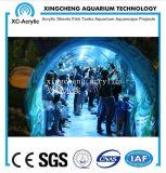 Precio de acrílico material de acrílico modificado para requisitos particulares del proyecto del mundo del mar