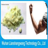 Trenbolone Enanthate 100mg/Ml, supplemento semifinito della costruzione del muscolo meno effetto secondario
