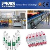 Het Vullen van het Water van Autoamtic Machine en Lijn Prodution voor Plastic Fles