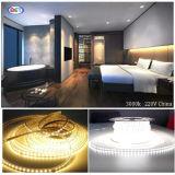 훈장 이상으로 호텔을%s LED 빛 지구 5050