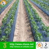 Дуя пленка Mulch PE черная для земледелия или садоводства