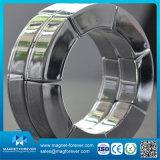 Neodymium de NdFeB N42 10mm/ímã de NdFeB