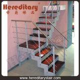 Лестница стальной штанги углерода A3 (SJ-3028)
