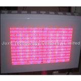 La pianta del LED coltiva la lampada (JUXN-31 600W)