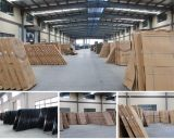 Porte en acier de garantie intérieure en bois extérieure de peau (SC-A204)