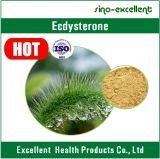 Pó natural beta Ecdysterone do extrato de Cyanotis