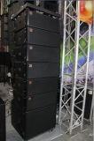 Serie van de Lijn 10inch van Diase de PRO Audio Dubbele Professionele 700W