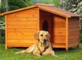 De Kennel van de hond (pcdh-D0064)