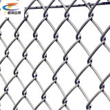 Fabbrica, collegare poco costoso della corte di tennis della rete fissa di sport