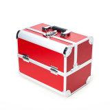 Cinco cores especializaram a caixa cosmética do plutônio