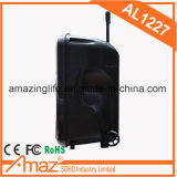 Altavoz portable de Teimeisheng 12inch con Mics sin hilos