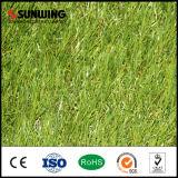 Sunwing 여가 장소를 위한 장식적인 SGS PPE 합성 인공적인 잔디