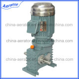 Alta calidad 0.75kw 1HP Three Phase Motor 9 Spline Motor