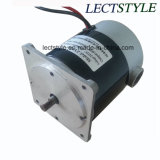 800-1500rpm 100W 12V Recumbent Bike Motor