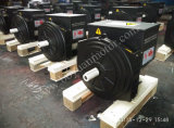 Single Bearing Double Bearing를 가진 무브러시 Alternator 6kw~500kw