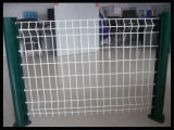 PVC Revêtue Soudée Wire Mesh Metal Fence China Anping Factory