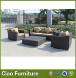 China Furniture Outdoor Rattan Schnittsofa für Weihnachten