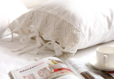 화학 Lace Bedding Duvet Cover (놓으십시오)