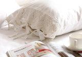 化学Lace Bedding Duvet Cover (セットしなさい)
