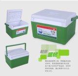 Mini frischer Kühlvorrichtung-Kasten für Picknick